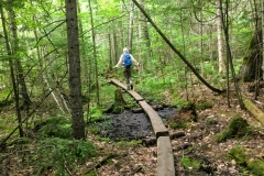 Balance-beaming our way across rough terrain on the Appalachian Trail