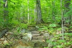 Appalachian Trail stairs